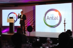 Antal Franchise | Executive Recruitment Business