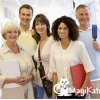 MagiKats Franchise | Maths and English Tuition Business