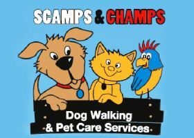 Scamps & Champs Franchise - Pet Services Business