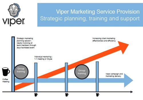 Viper Marketing Franchise | Communication Business
